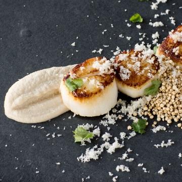 Pétoncle poêlé purée, quinoa croustillant et neige de chou-fleur