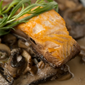 Braised salmon chasseur
