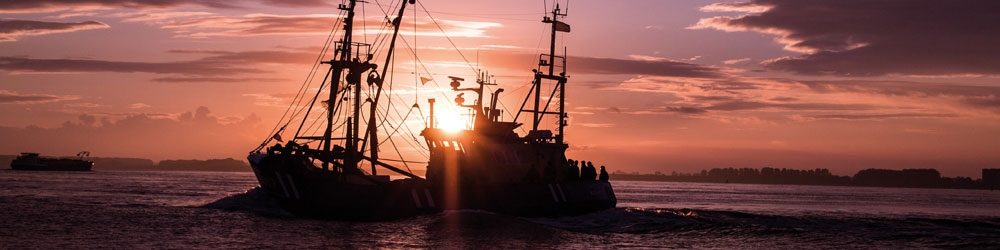 La pêche durable
