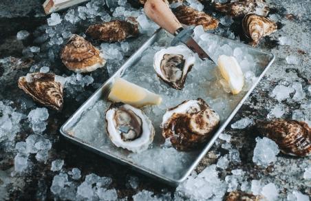 Shellfish, mollusks and bivalves