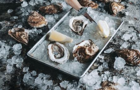 Coquillages, mollusques et bivalves